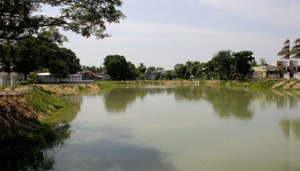 Project-Revival-of-Pond