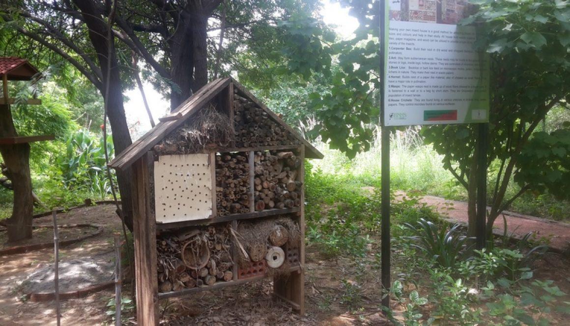 Visit to Asola Bhatti Wildlife Sanctuary of BSc students, MRU