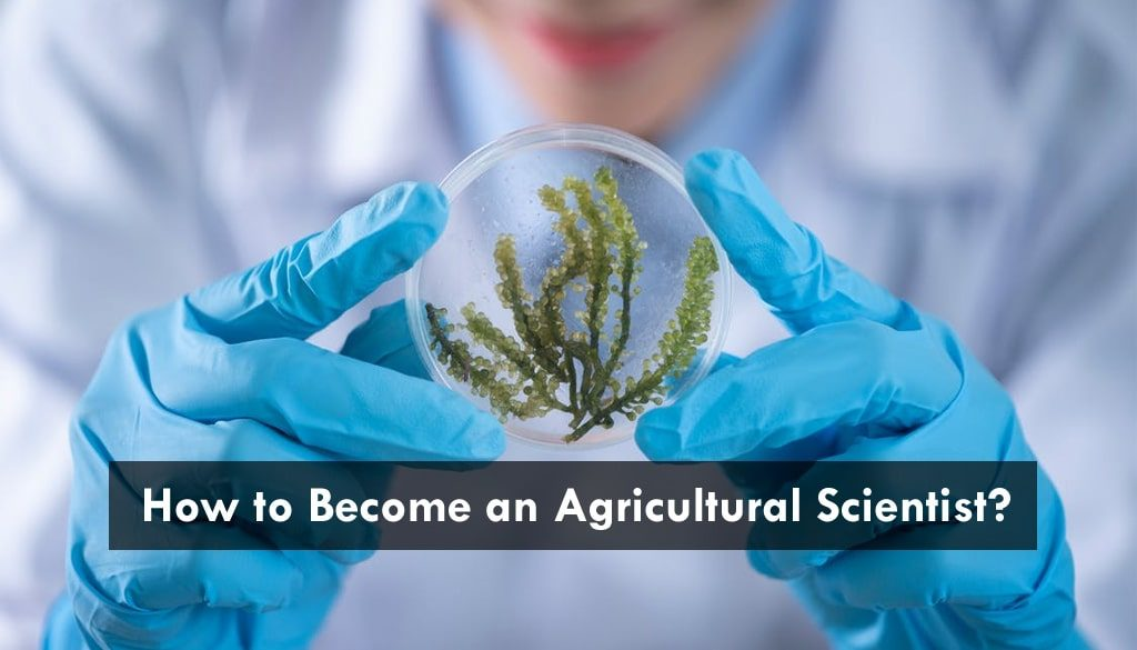 agricultural scientist