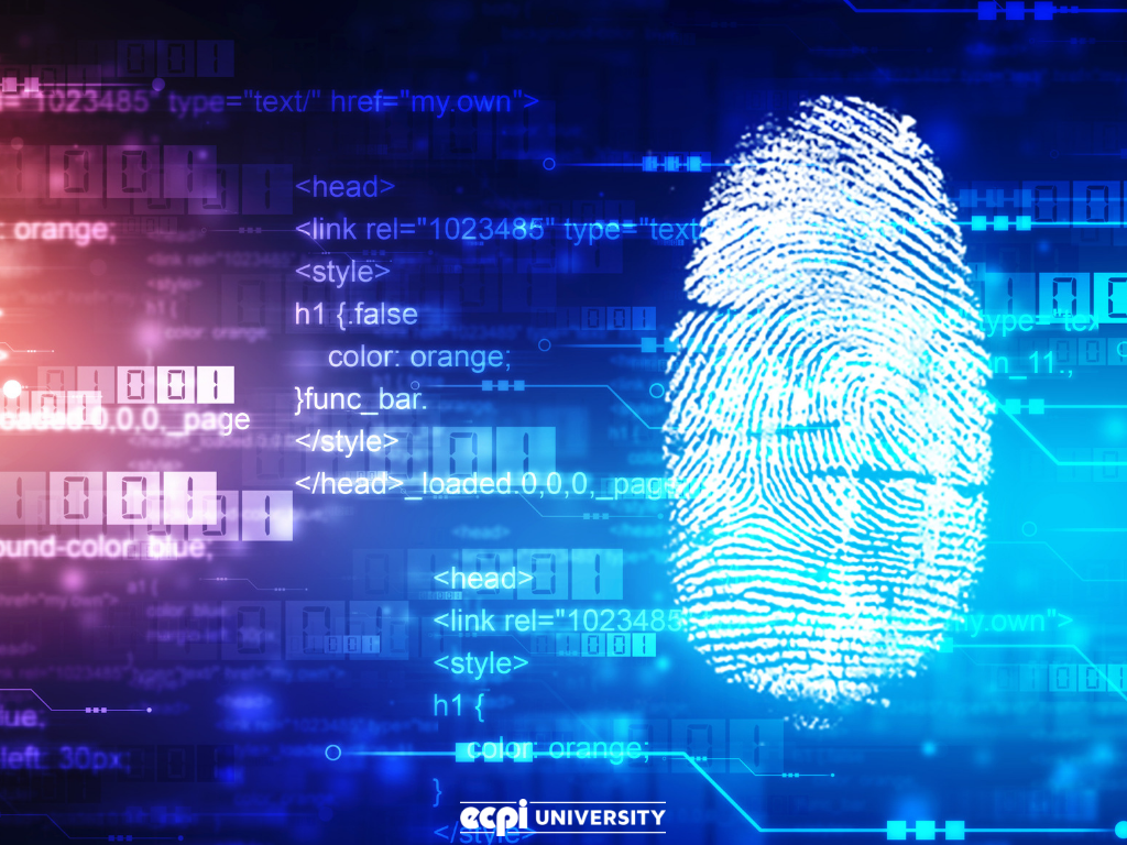 Digital Forensics and Cyber Security